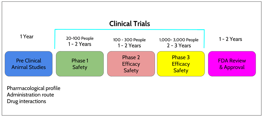 Clinical Trail Phases