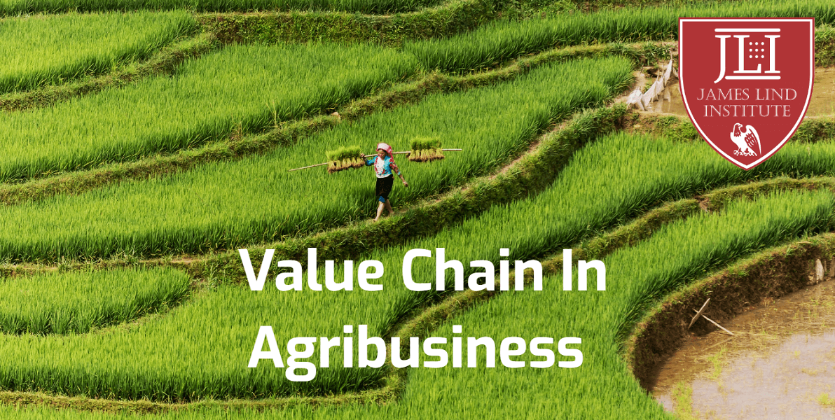 Value chain Agribusiness