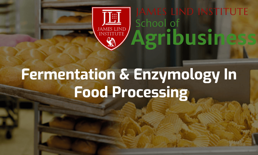 fermentation and enzymology in food processing