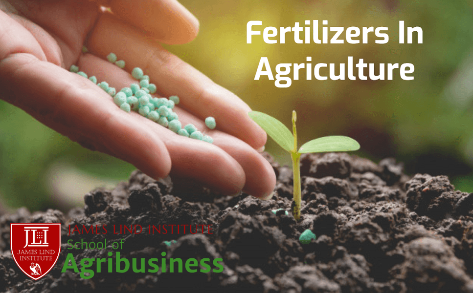 Fertilizers In Agriculture