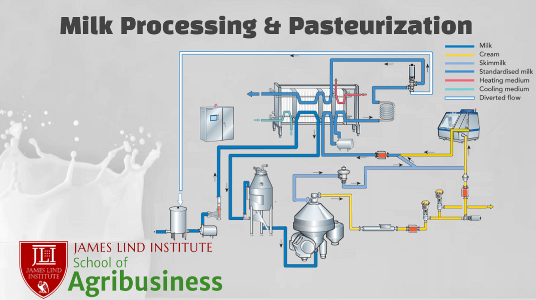 Milk Processing and Pasteurization