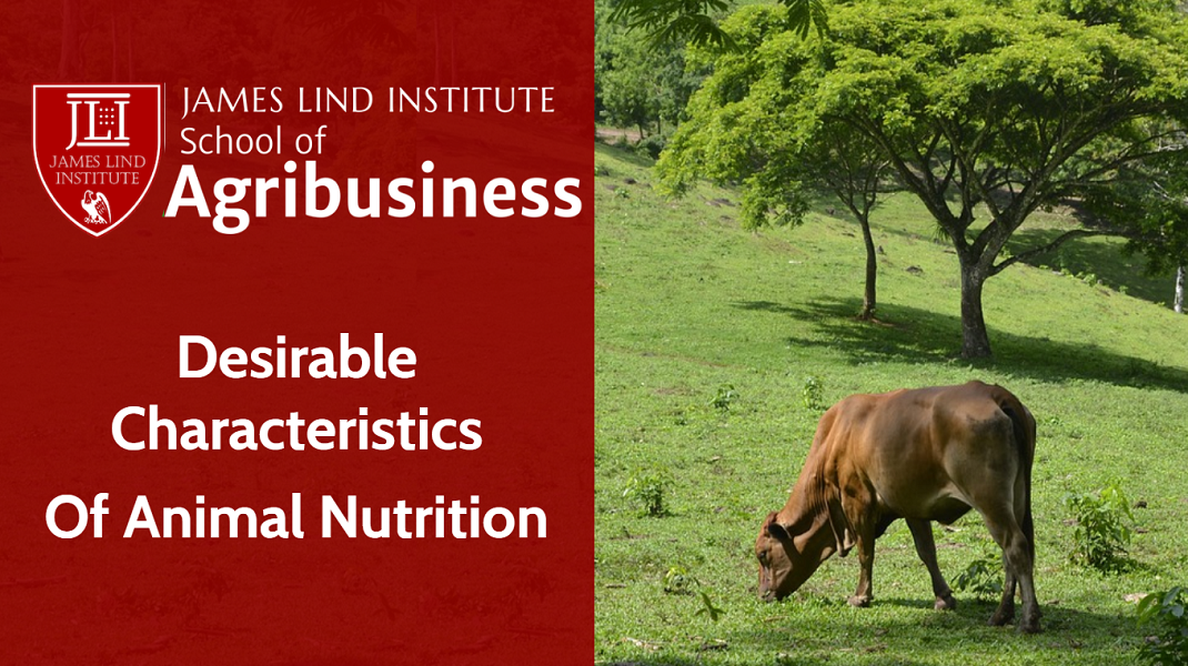 Animal Nutrition Desirable Characteristics of Nutrition
