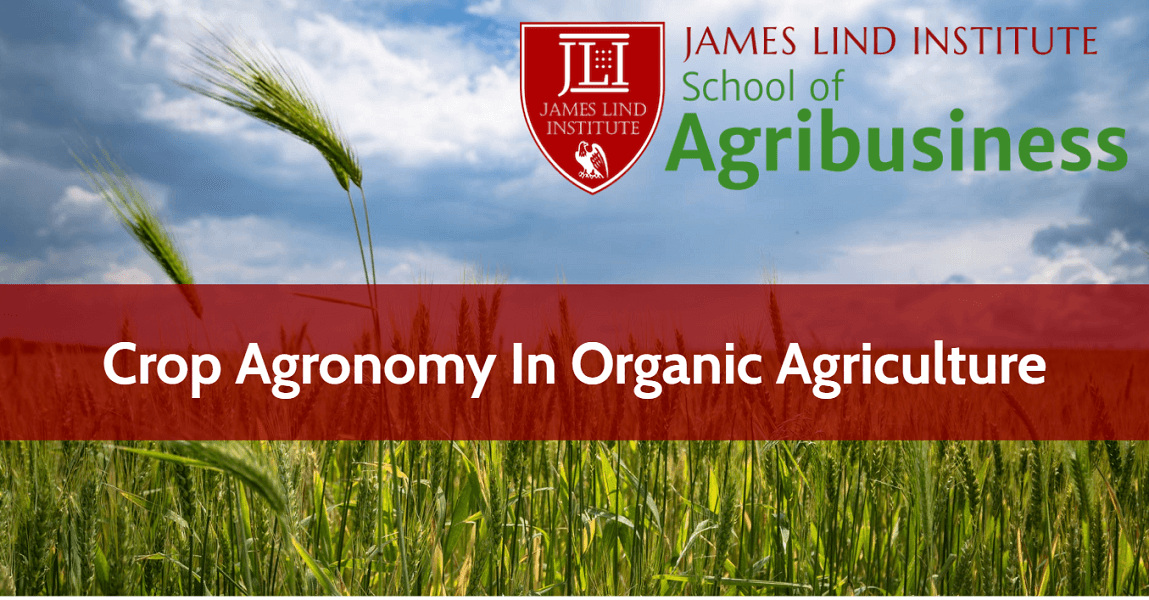 Crop Agronomy Organic Agriculture